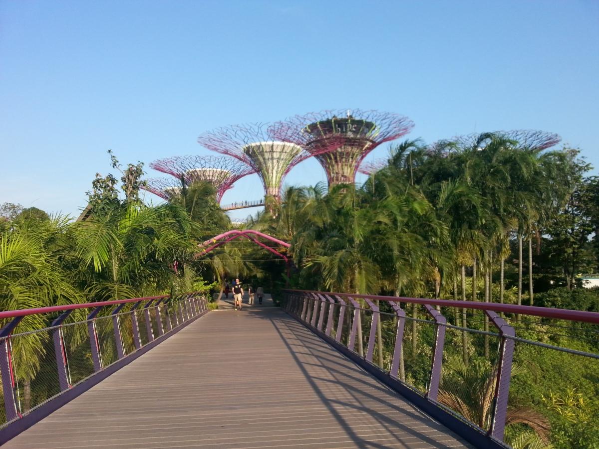[新加坡] 濱海灣花園 Gardens by the Bay 一日遊(追加園林餐廳 Pollen)