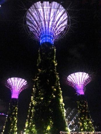 亮燈表演於晚上7:45和 8:45