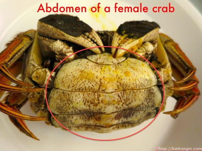 female crab