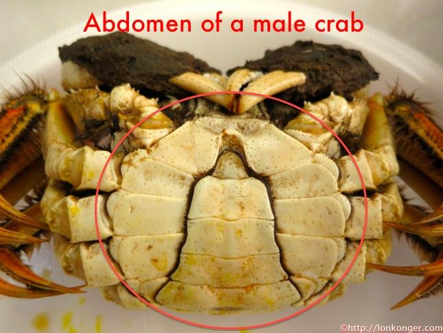 male crab