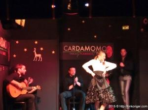Flamenco 舞蹈