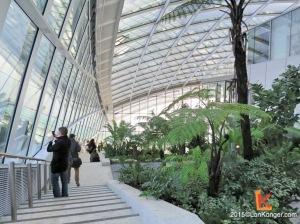 由100種亞熱帶植物組成的綠化地帶遍佈三層的Sky Garden,遊人彷如置身於都市裡的迷你園林。